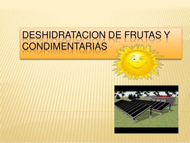 DESHIDRATACION DE FRUTAS YCONDIMENTARIAS