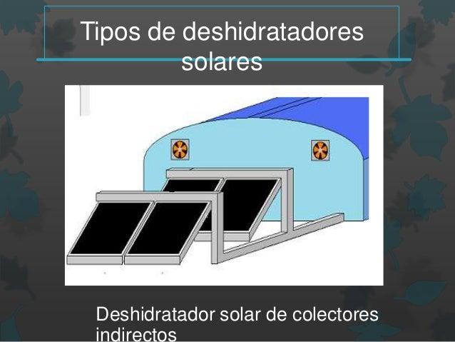 Deshidratador Solar Modelos Y Manual De Construccion