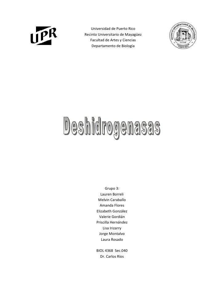 73660-736604956810-165100Universidad de Puerto Rico<br />Recinto Universitario de Mayagüez<br />Facultad de Artes y Cienci...