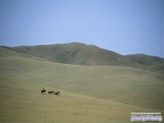 Desierto de mongolia