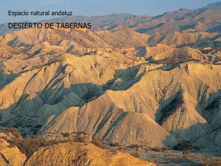 Desierto de tabernas Espacio natural andaluz DESIERTO DE TABERNAS