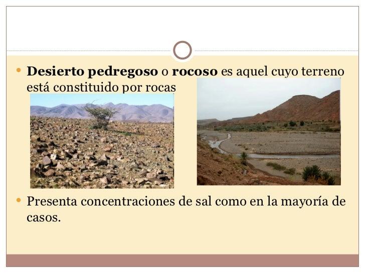 Desierto tropical for Suelo pedregoso