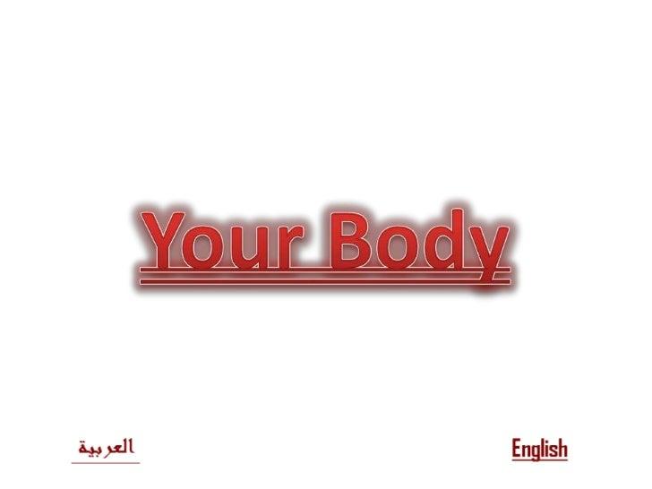 بسم الله الرحمن الرحيم<br />Your Body<br />