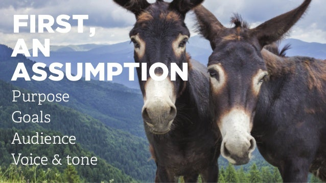 FIRST, AN ASSUMPTION Purpose Goals Audience Voice & tone