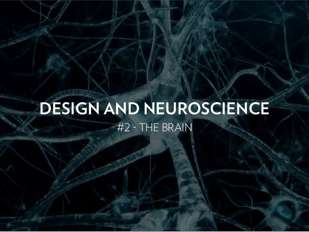 DESIGN AND NEUROSCIENCE #2 - THE BRAIN