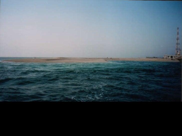 Final Project Design of a Visitors' Center in Um Al-Maradim Island <ul><li>text </li></ul>