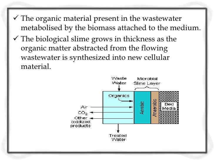 Flow Diagram for Trickling Filters     Recirculation= A portion of the TF effluent recycled through the filter     Recircu...
