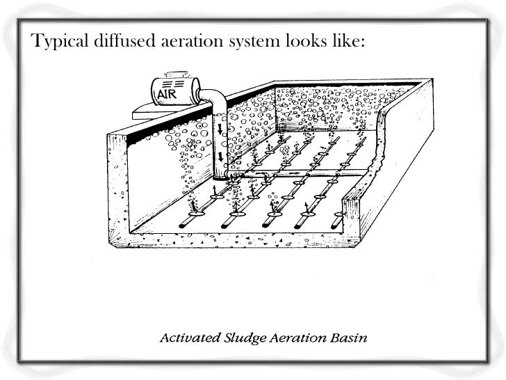 These plates are arranged on manifolds at the bottom ofaeration tanks as shown here.