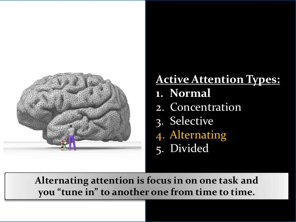Anatomy Of Hell Deutsch active attention types:<br /> normal<br