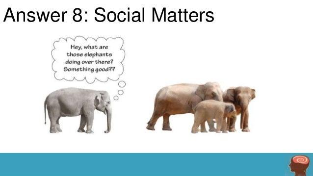 Answer 8: Social Matters