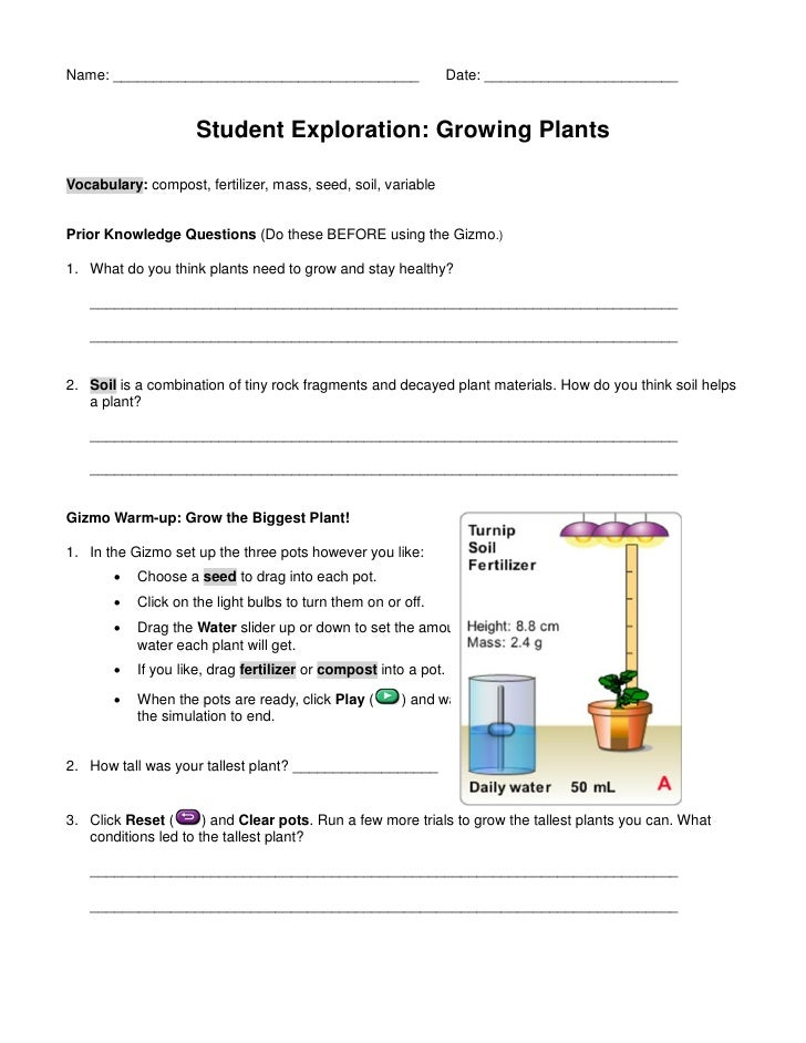 Designing a school garden knowledge handouts and notes