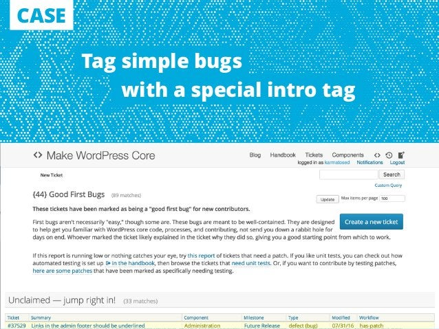 CASE Tag simple bugs with a special intro tag