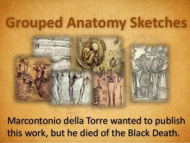 750 Anatomy Sketches