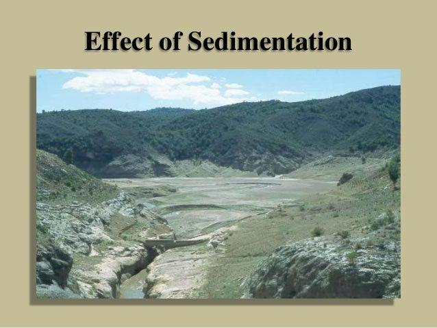 Effect of Sedimentation