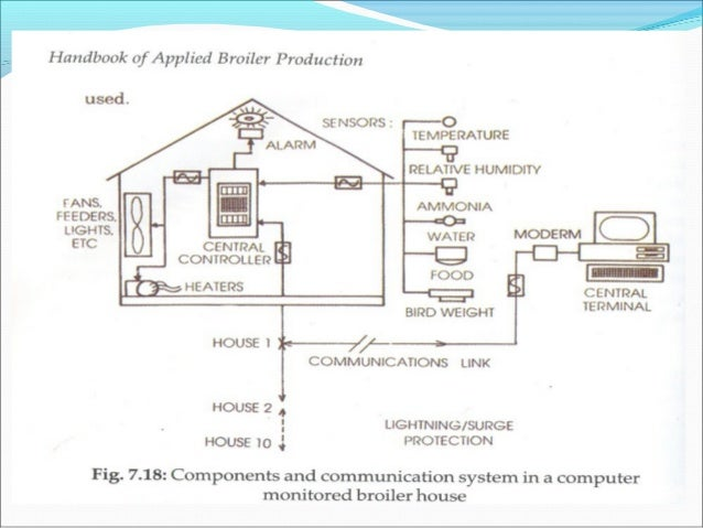 POULTRY BUSINESS PLAN FOR LAYERS AND BROILERS