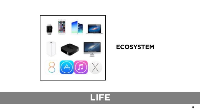 29 THE ROLE OF TRADITIONAL BLUEPRINTS ECOSYSTEM LIFE