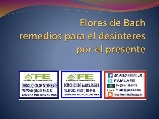 CLEMATIS  REMEDIO HOMEOPATICO  RF-9  CLEMATIS  AUXILIAR EN: FUGA DE LA REALIDAD  PRESENTACION: FRASCO PASTILLAS  US...
