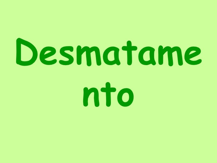 Desmatamento<br />