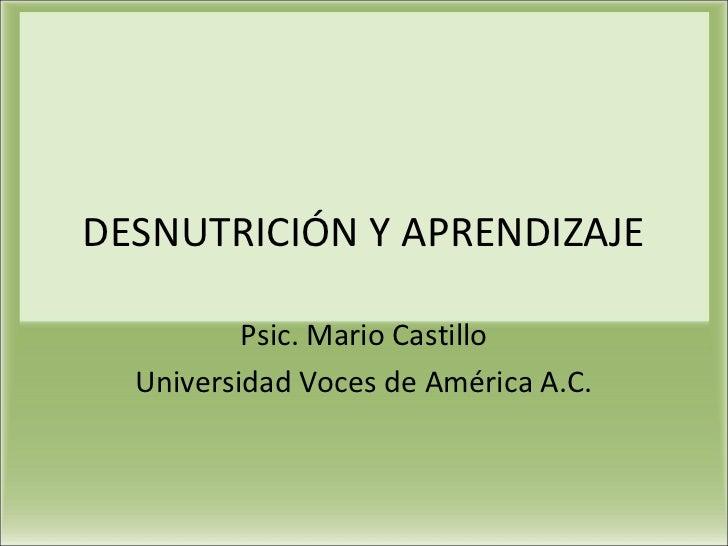 DESNUTRICIÓN Y APRENDIZAJE          Psic. Mario Castillo  Universidad Voces de América A.C.