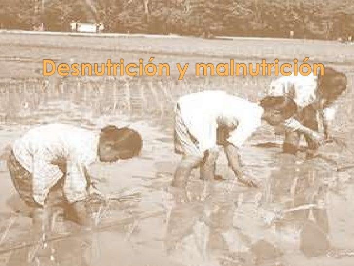 Desnutrición y malnutrición<br />