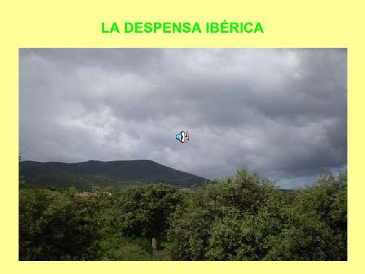 LA DESPENSA IBÉRICA