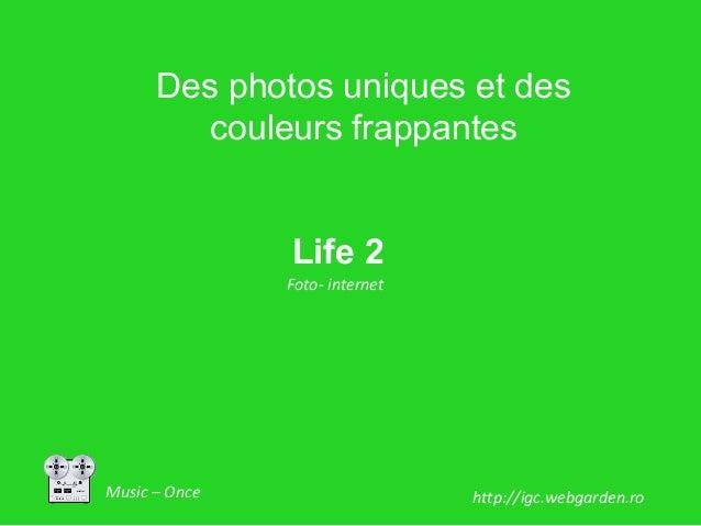Music – Once Life 2 Foto- internet http://igc.webgarden.ro Des photos uniques et des couleurs frappantes