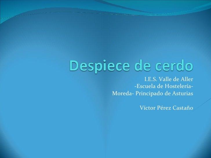I.E.S. Valle de Aller -Escuela de Hostelería- Moreda- Principado de Asturias Víctor Pérez Castaño