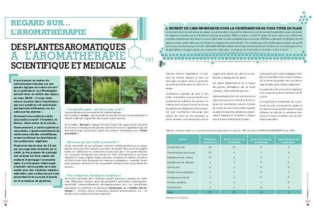 LeMagazinedesinternesetdel'ISNIH LeMagazinedesinternesetdel'ISNIH 4544 REGARD SUR… L'AROMATHÉRAPIE DESPLANTESAROMATIQUES A...
