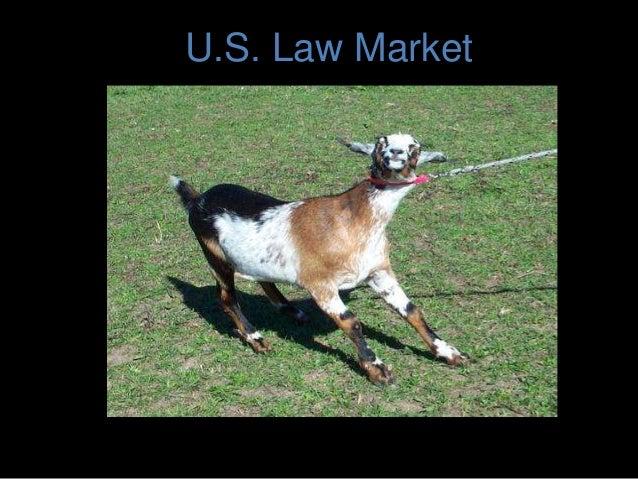 U.S. Law Market