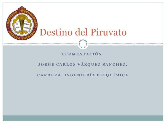 Destino del Piruvato        FERMENTACIÓN.JORGE CARLOS VÁZQUEZ SÁNCHEZ.CARRERA: INGENIERÍA BIOQUÍMICA