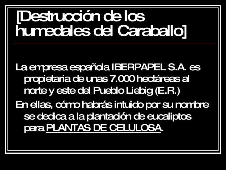 [Destrucción de los humedales del Caraballo] <ul><li>La empresa española IBERPAPEL S.A. es propietaria de unas 7.000 hectá...