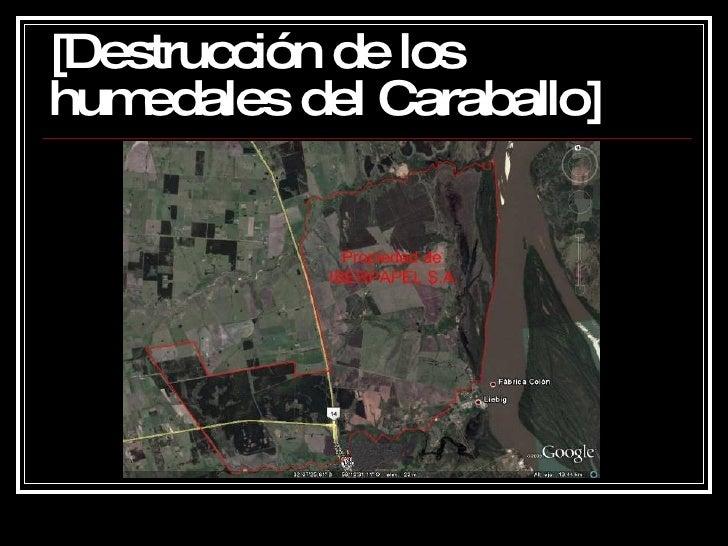 [DestruccióN De Los Humedales Del Caraballo] Slide 3