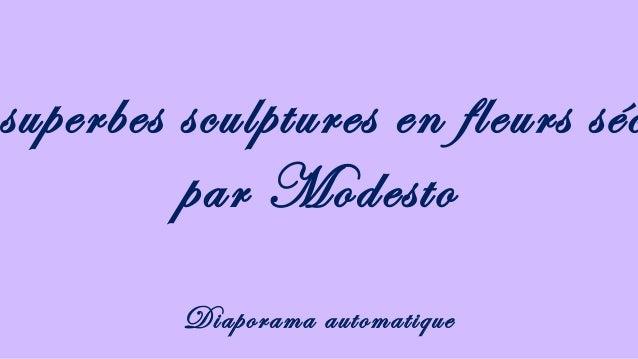 superbes sculptures en fleurs séc par Modesto Diaporama automatique
