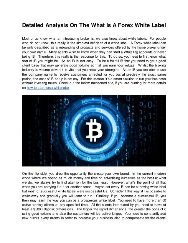 Introducing Broker (IB) vs White Label   Forex Brokers