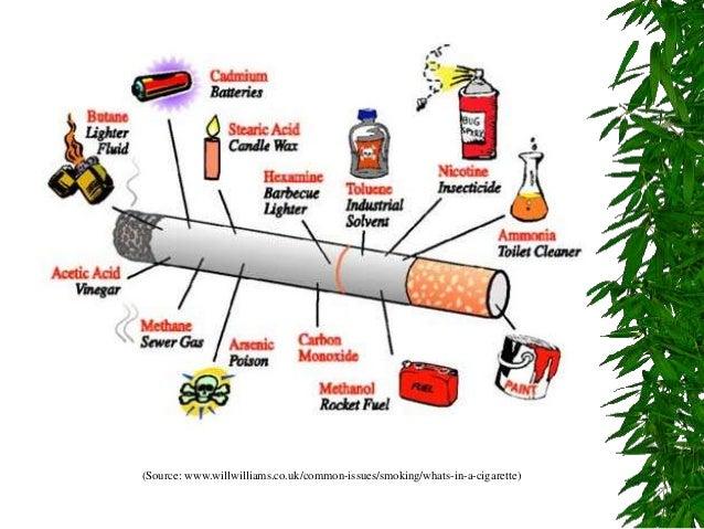 hazards of smoking essay