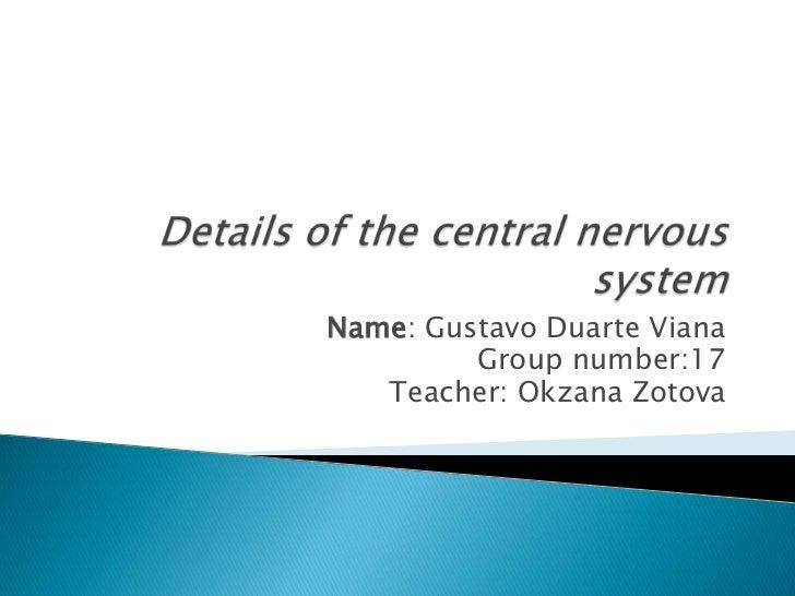 Name: Gustavo Duarte Viana         Group number:17   Teacher: Okzana Zotova
