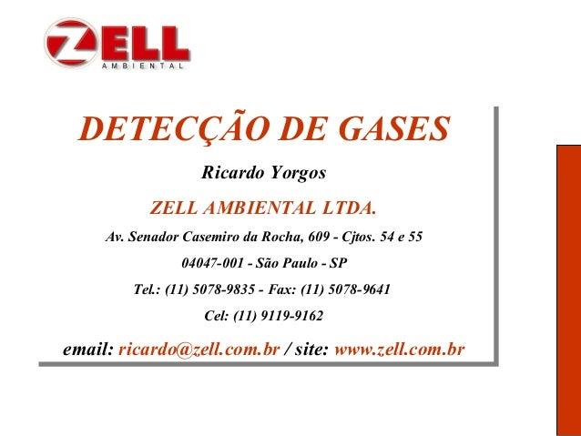 DETECÇÃO DE GASES Ricardo Yorgos ZELL AMBIENTAL LTDA. Av. Senador Casemiro da Rocha, 609 - Cjtos. 54 e 55 04047-001 - São ...