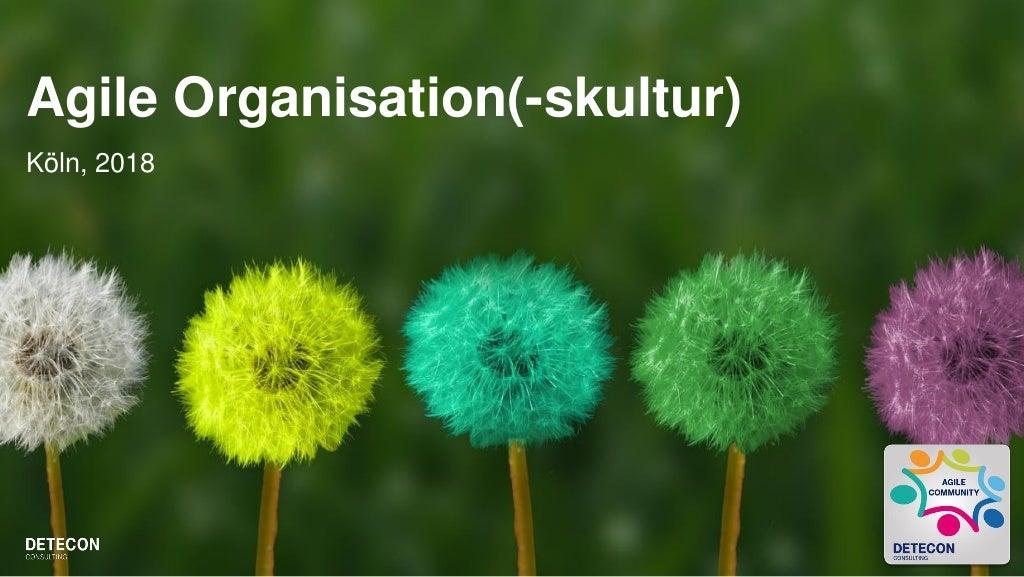Agile Organisationsstruktur - Ein Überblick