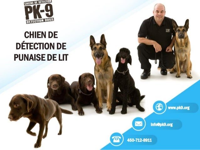 info@pk9.org 450-712-8911 www.pk9.org CHIEN DE DÉTECTION DE PUNAISE DE LIT