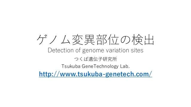 ゲノム変異部位の検出 Detection of genome variation sites つくば遺伝子研究所 Tsukuba GeneTechnology Lab. http://www.tsukuba-genetech.com/