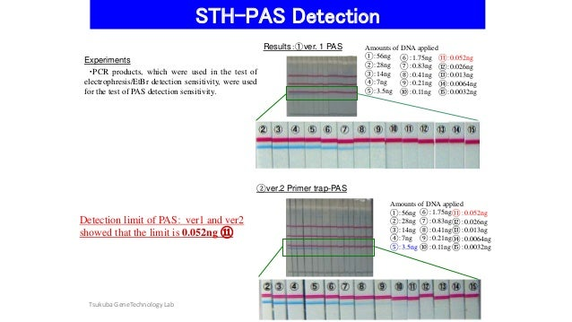 Detection of virus sequences using STH-PAS and Real-time PCR Slide 3