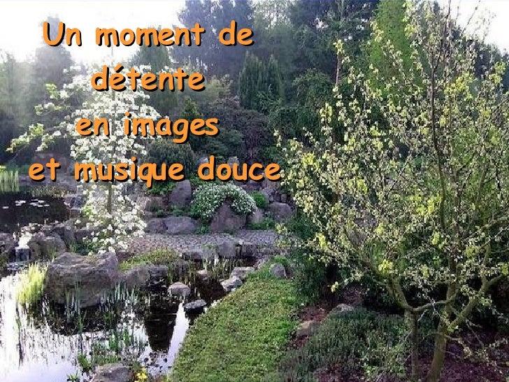 Un moment de  détente  en images  et musique douce