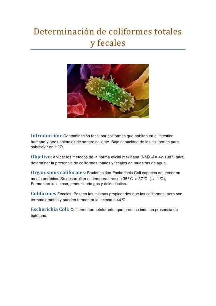 Determinación de coliformes totales y fecales<br />Introducción: Contaminación fecal por coliformes que habitan en el inte...