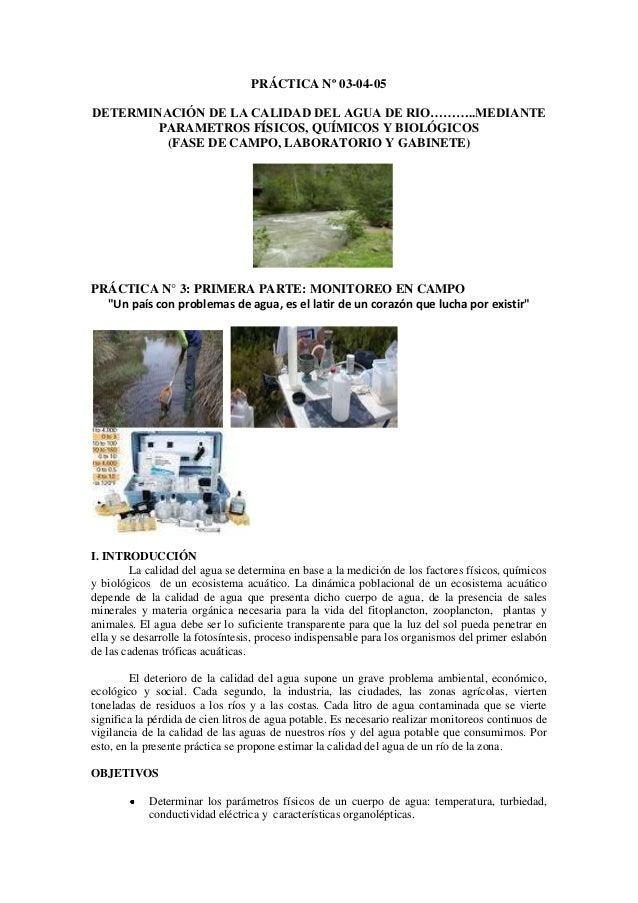 PRÁCTICA Nº 03-04-05DETERMINACIÓN DE LA CALIDAD DEL AGUA DE RIO………..MEDIANTEPARAMETROS FÍSICOS, QUÍMICOS Y BIOLÓGICOS(FASE...