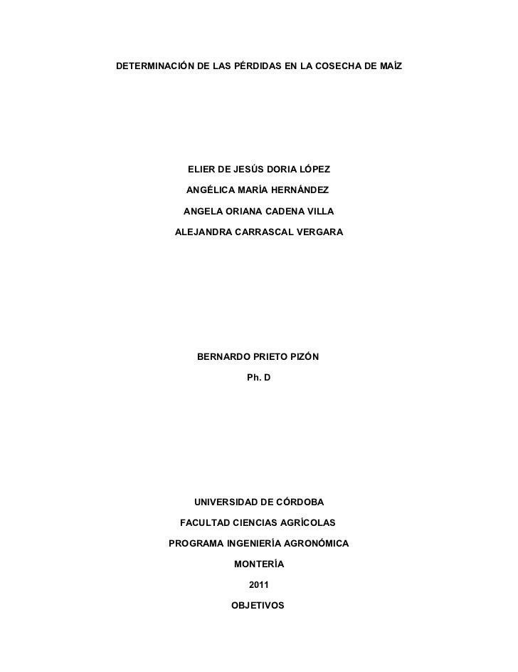 DETERMINACIÓN DE LAS PÉRDIDAS EN LA COSECHA DE MAÍZ            ELIER DE JESÚS DORIA LÓPEZ            ANGÉLICA MARÍA HERNÁN...