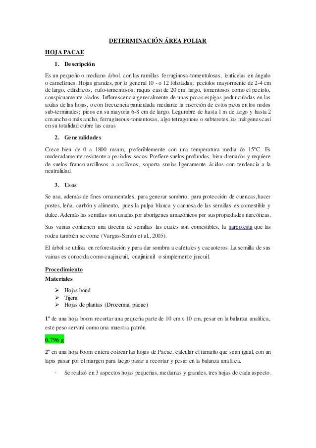 DETERMINACIÓN ÁREA FOLIAR HOJA PACAE 1. Descripción Es un pequeño o mediano árbol, con las ramillas ferruginosa-tomentulos...
