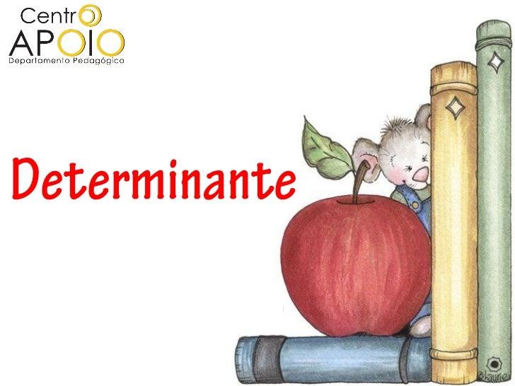 D E  T   E    R     MDeterminante      I       N         A          N          T           E