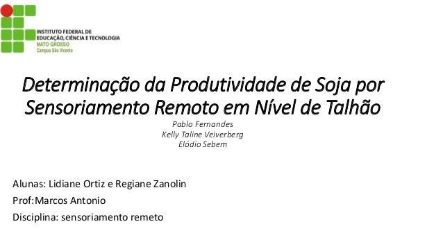 Determinação da Produtividade de Soja por Sensoriamento Remoto em Nível de Talhão Pablo Fernandes Kelly Taline Veiverberg ...
