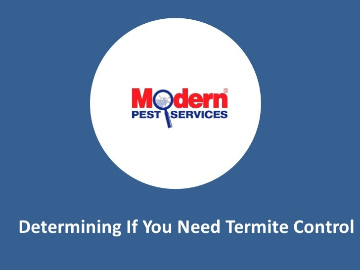 Determining If You Need Termite Control<br />
