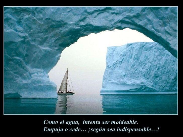 Como el agua,  intenta ser moldeable. Empuja o cede… ¡según sea indispensable…!